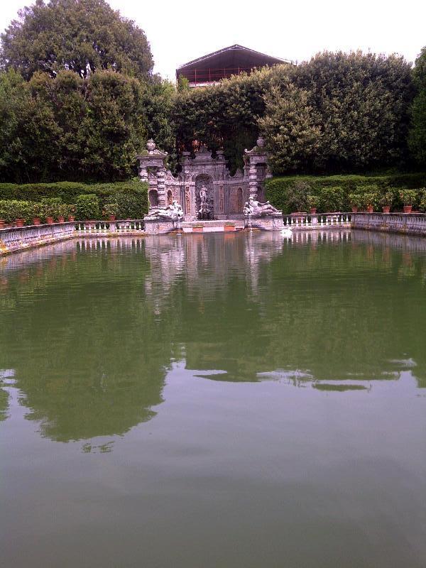 the carp pool