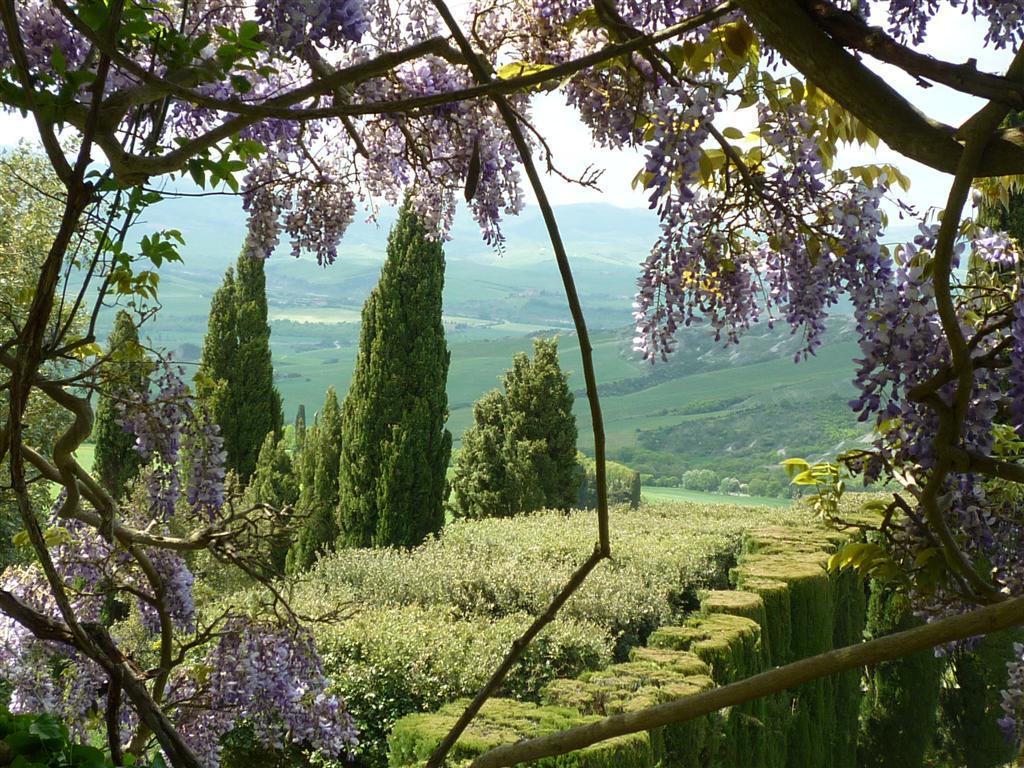 View from La Foce